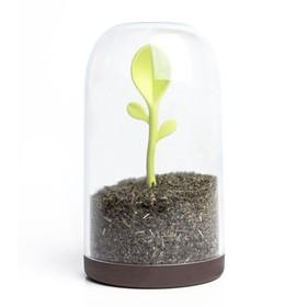 Контейнер для сыпучих продуктов Sprout Jar, 700 мл