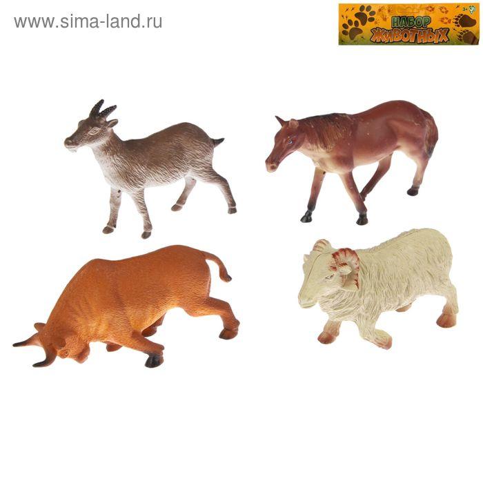 """Набор животных """"Животные планеты"""" (набор 4 шт), МИКС"""