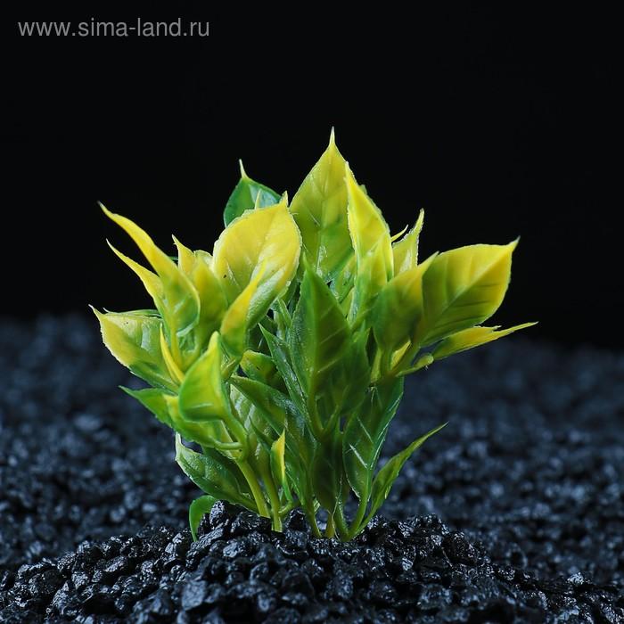 Растение искусственное аквариумное малое, 7 см