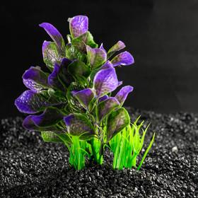 Растение искусственное аквариумное, 14 х 12 х 17 см
