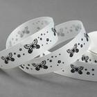 "Лента репсовая ""Бабочки"", 25мм, 22±1м, цвет белый"