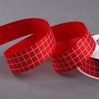 """Лента репсовая """"Клетка"""", 25мм, 22±1м, цвет красный"""