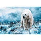 "Фотообои ""Медведь во льдах"" M 406 (4 полотна), 400х270 см"