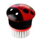 Щётка для посуды Ladybug