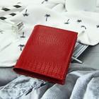 Визитница вертик ФВ-10, 6,5*1,5*11,5, 1 ряд, 18 карт, ящер т.красный