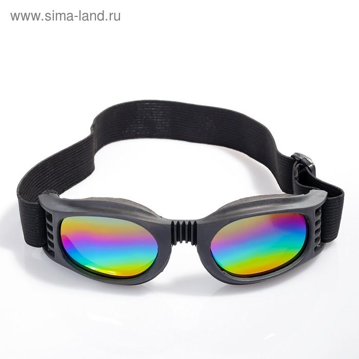 """Очки спортивные """"Koestler"""" KO-144, линзы радужные, оправа чёрная"""