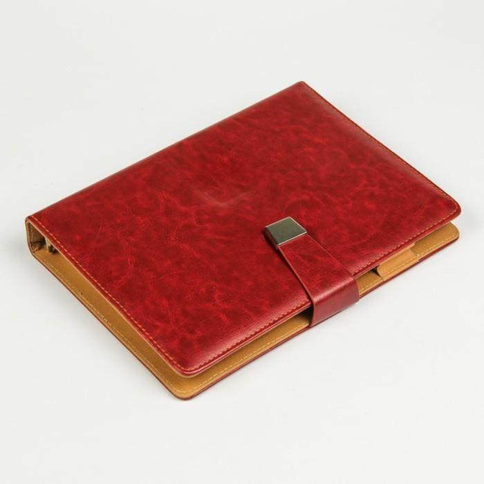 Органайзер на кольцах, формат А5, 96 листов в линейку, с ремешком, «Классика», МИКС - фото 369518363