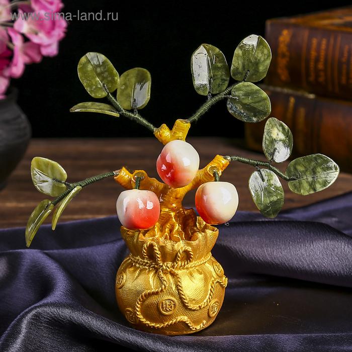"""Бонсай """"Мешочек с тремя персиками"""""""