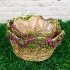 Набор кашпо «Цветы», 2 шт: 19,5x19,5x9 см; 14x14x8,5 см, ручная работа, бежевый