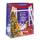 Пакет ламинированный XL «Исполнения Желаний в Новом году», 40 × 49 × 19 см
