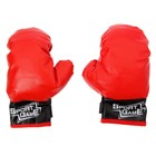 "Kids Boxing gloves ""Rage"""
