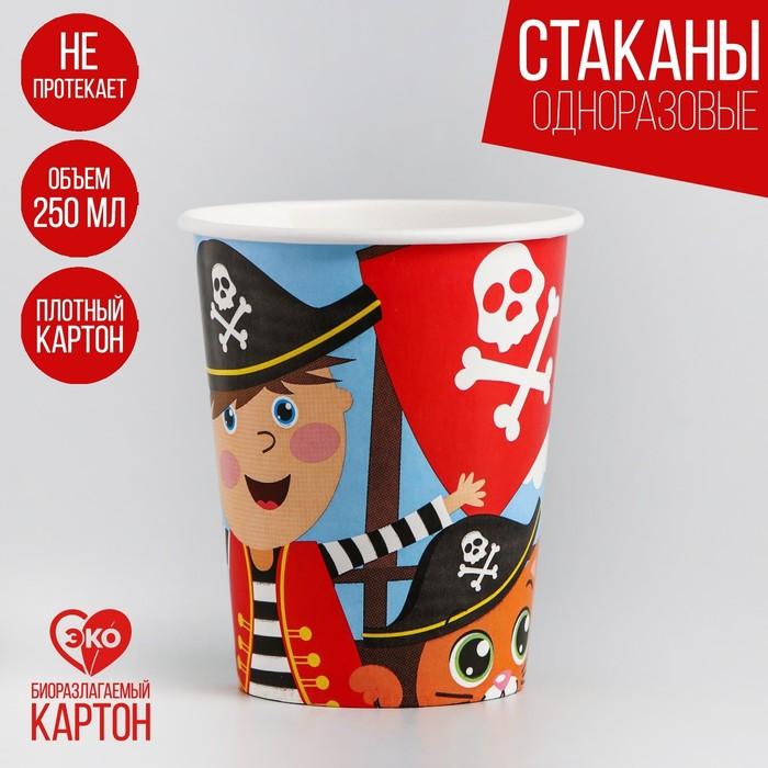 Стакан бумажный «Пират», 250мл - фото 308011491