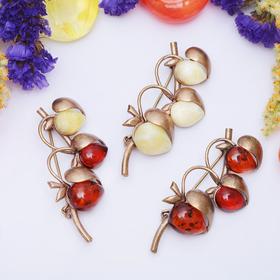 Брошь 'Янтарь' яблочки, цвет МИКС в бронзе Ош