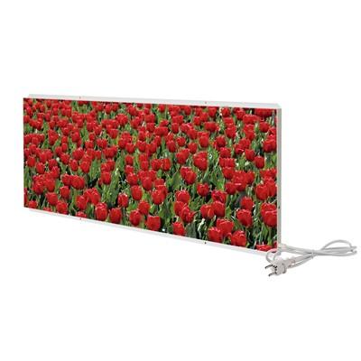 """Отопительная панель """"СТЕП 250 - Тюльпаны"""", 0.96 х 0.54 м"""