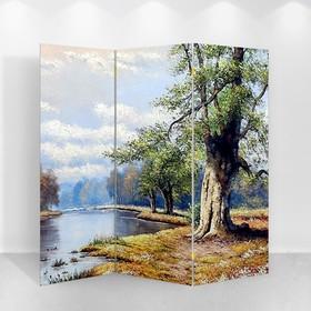 Ширма 'Картина маслом. Одинокий дуб', 160 × 150 см Ош