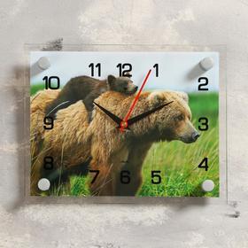"""Часы настенные, серия: Животный мир, """"Медведица с медвежонком"""", 20х26 см  микс в Донецке"""