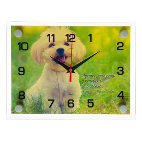 Wall clock, series: Animal world,