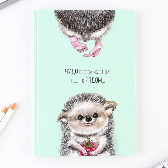 """Ежедневник """"Чудо рядом"""", твёрдая обложка, А5, 80 листов"""