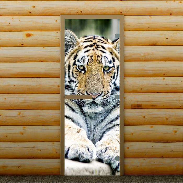 """Дверь для бани и сауны """"Тигр"""", 190 х 70 см, с фотопечатью 8 мм Добропаровъ"""