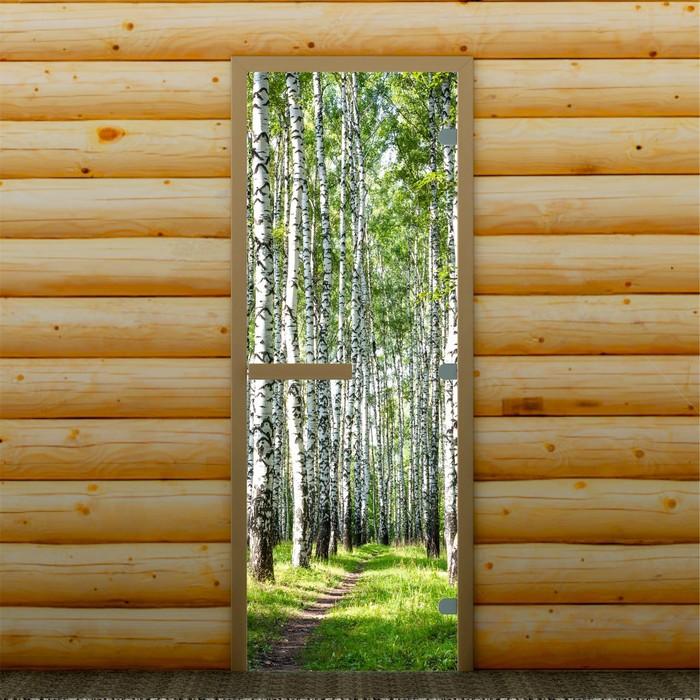 """Дверь для бани и сауны """"Берёзовая роща"""", 190 х 70 см, с фотопечатью 8 мм Добропаровъ"""