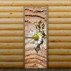 """Дверь для бани и сауны """"Ромашка"""", 190 х 70 см, с фотопечатью 8 мм Добропаровъ"""