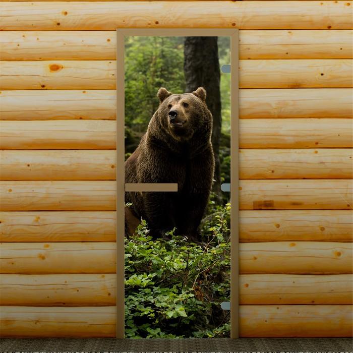 Дверь для бани и сауны Д1, 190х70см, с фотопечатью 8мм Добропаровъ