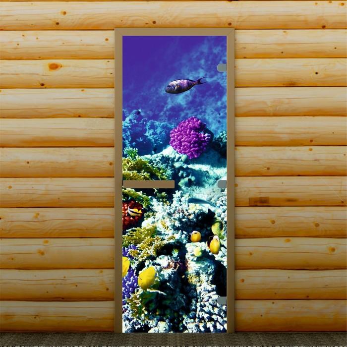 """Дверь для бани и сауны """"Морские обитатели"""", 190 х 70 см, с фотопечатью 8 мм Добропаровъ"""