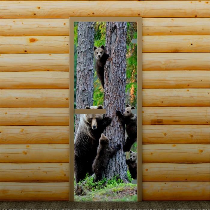 """Дверь для бани и сауны """"На прогулке"""", 190 х 70 см, с фотопечатью 8 мм Добропаровъ"""