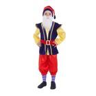 """Карнавальный костюм """"Гном"""", колпак, рубаха с жилетом, бриджи, борода, ремень, цвет синий, р. 28, рост 98-104 см"""