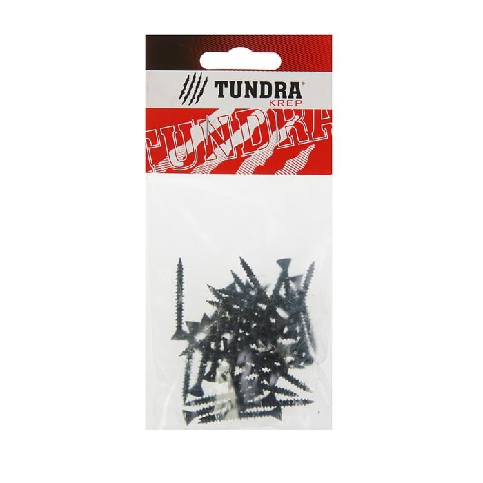 Саморезы по ГВЛ TUNDRA krep, 3.9х35 мм, 40 шт.