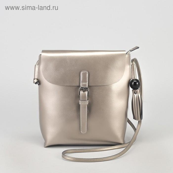 Сумка жен L-8628-1, 23*6*26, отд с перег на молнии, н/карман, серебро