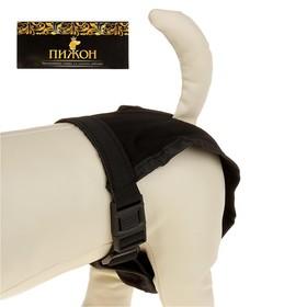 Трусы для собак с 3 сменными вкладышами, размер S-М (талия 32-39 см) Ош