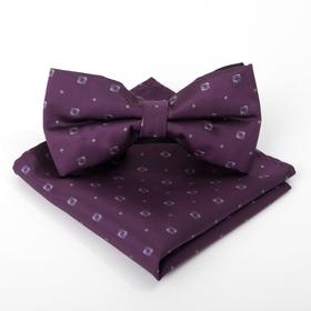 Набор мужской: галстук-бабочка 12 х 6, платок 21 х 21, фиолетовый, п/э