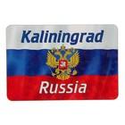 "Магнит ""Калининград"", герб, 9,6х6,5 см"