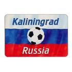 "Магнит ""Калининград"", мяч, 9,6х6,5 см"