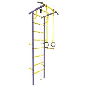 Детский спортивный комплекс «Роки-1», ПВХ, цвет фиолетовый