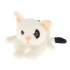 """Мягкая игрушка """"Котёнок"""", 19 см"""