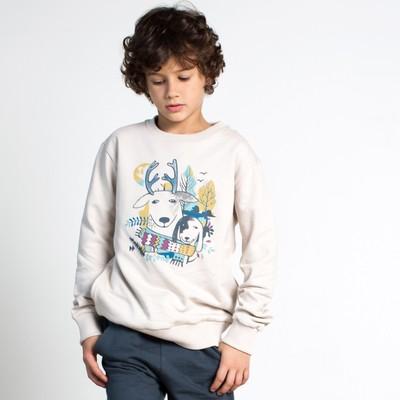 Джемпер для мальчика, рост 104 см, цвет серый 162-320-02