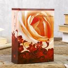 Фотоальбом на 100 фото 10х15 см Image Art, цветы, МИКС