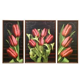 """Триптих """"Бордовые тюльпаны"""" (53х73; 2-36х73) 125*73 см"""