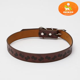 """In a collar with a basis of thermoplastic rubber with embossed """"Bone"""", 64 x 2.5 cm"""