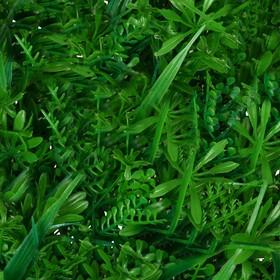 Декоративная панель, 40 × 60 см, «Сочная трава»