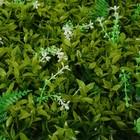 """Газон-коврик искусственный, 40 х 60 см, """"Белые цветы"""""""