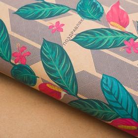 Бумага упаковочная крафт 'Крупные листья', 50 х 70 см Ош