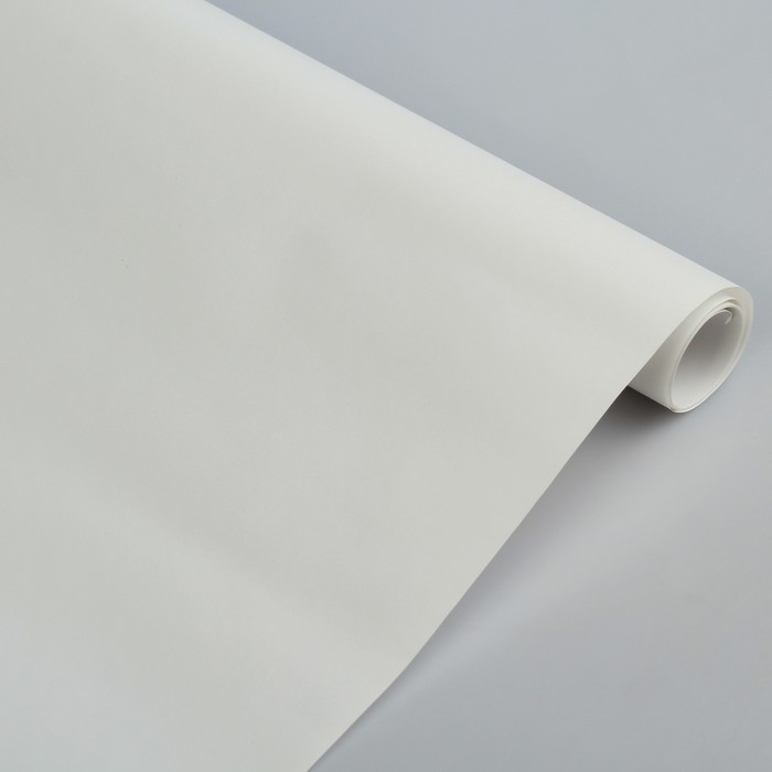 Бумага цветная Лакированная в рулоне 500*2000 мм Sadipal белый 6179