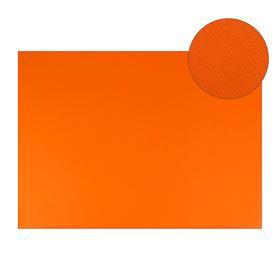 Картон цветной, Двусторонний: текстурный/гладкий, 210 х 297 мм, Sadipal Fabriano Elle Erre, 220 г/м, оранж ARAGOSTA
