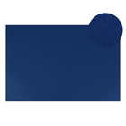 Картон цветной, Двусторонний: текстурный/гладкий, 210 х 297 мм, Sadipal Fabriano Elle Erre, 220 г/м, синий, BLUE