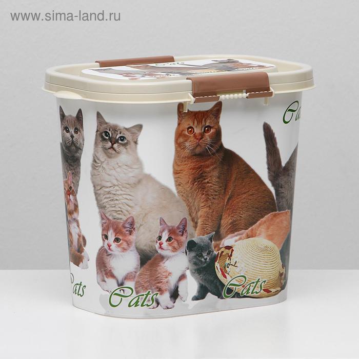 Контейнер Cats для корма, овальный, 10 л, микс цветов