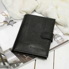 Портмоне 3 в 1, отдел, для карт, для монет, для автодокументов+паспорт, игуана, цвет чёрный