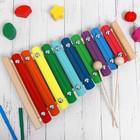 Металлофон разноцветный